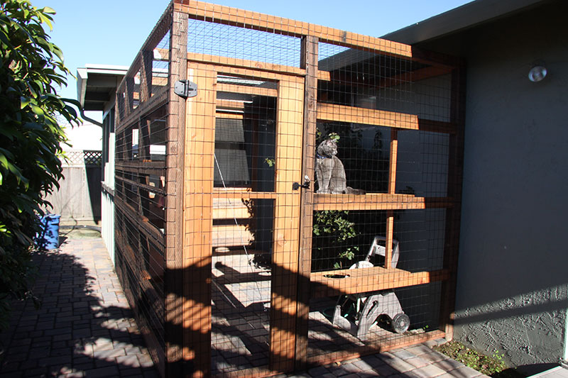 Catio Made From Redwood