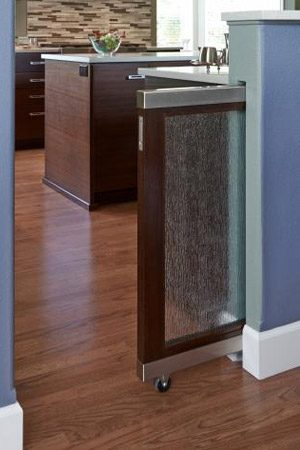 pet friendly remodel pocket door