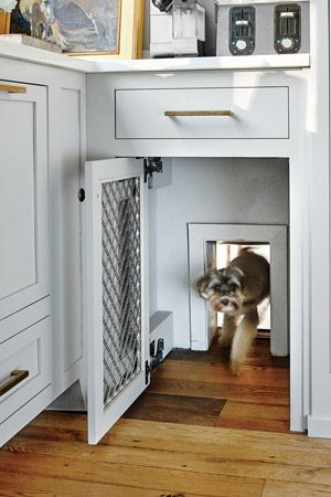 pet friendly remodel hidden dog door